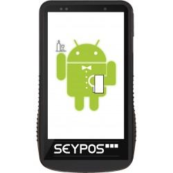 SEYPOS DT4100